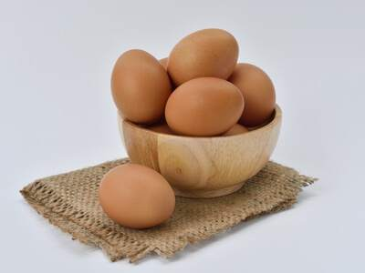 GALAB-EGG-PRODUCT-TESTING